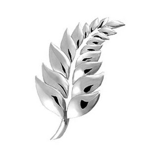 Fern Brooch.